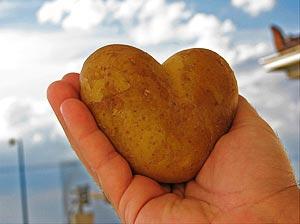 люблю картошку