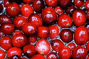 ягода клюква